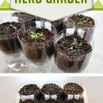 Super Simple DIY Self Watering Herb Garden