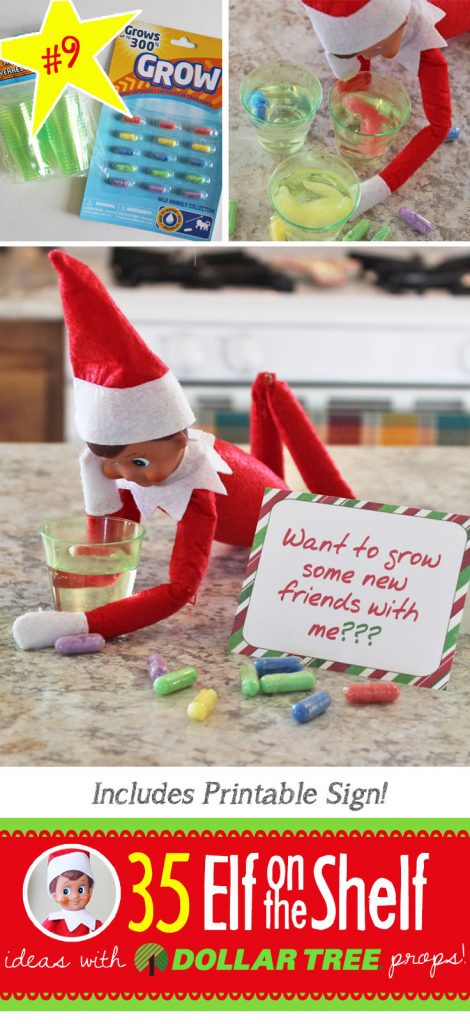 Want to grow some friends?? Find the free printable and 55+ BRAND NEW Elf on the Shelf ideas for this year! These fun, creative & EASY ideas all include an item from the Dollar Tree! #Christmas #ElfOnTheShelf #Ideas #Easy #Funny #Toddler #DIY #DollarStore
