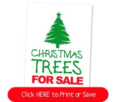 35 New Elf On The Shelf Ideas 5 Christmas Tree Sale