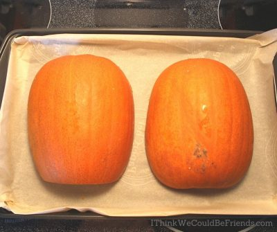 pumpkin cut in half, face down
